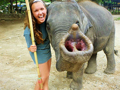 Tourism Phuket Education Abroad Asia - Elephant Trekking